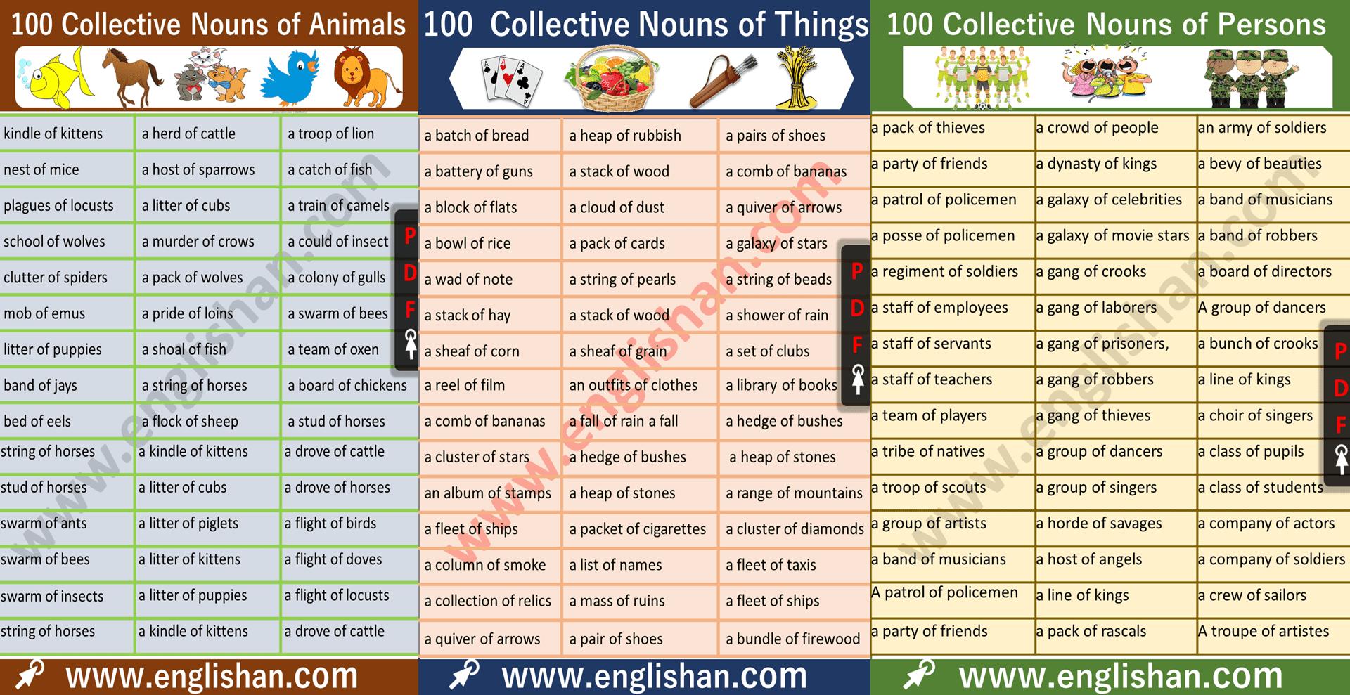 Common Nouns List Animals