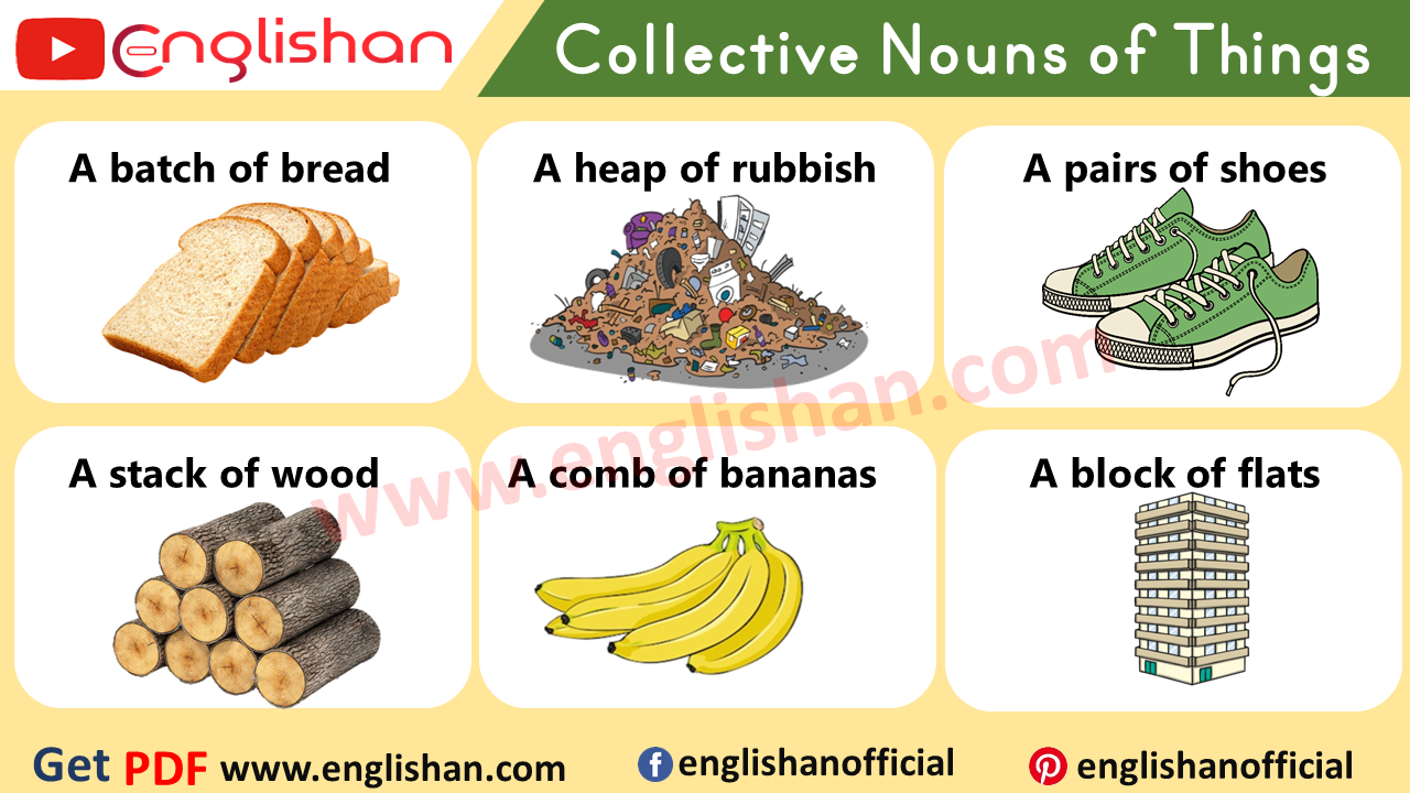 Collective Nouns Examples