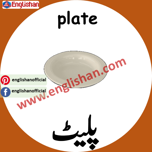 Plate meaning in urdu