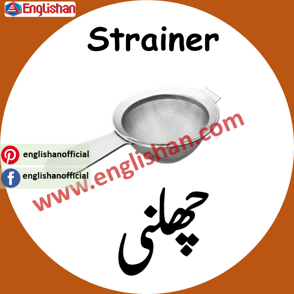 Steiner meaning in urdu