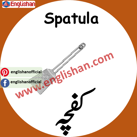 Spatula meaning in urdu