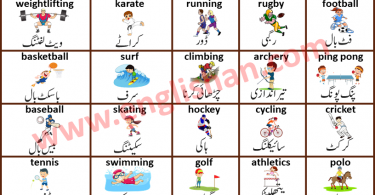Sports Picture Vocabulary