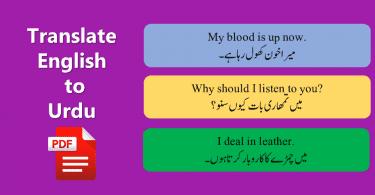 English To Urdu Sentences Translations With PDF File