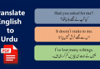 Commonly Used Urdu Sentences With English Free PDF Lesson