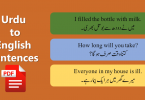 Urdu to English Sentences of Daily Use with PDF