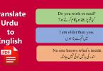 Translate Urdu to English Sentences Flashcards