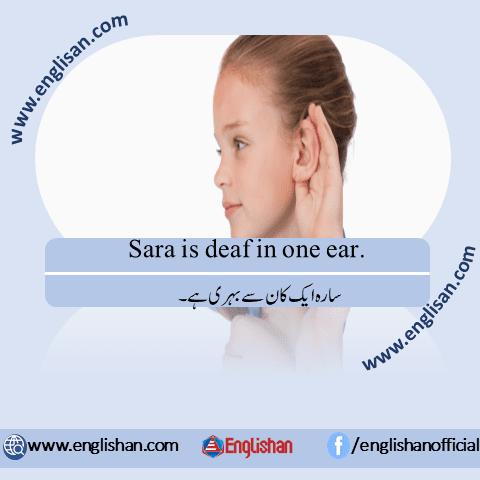 English To Urdu Sentences Translations