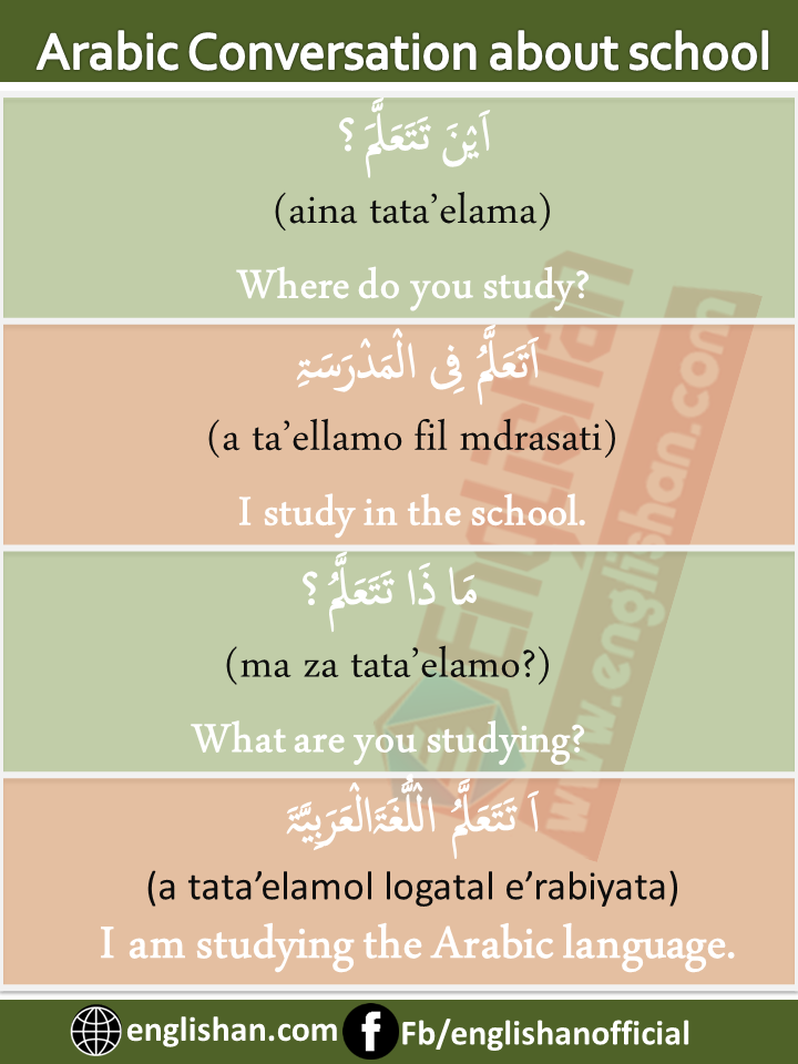 Arabic English Conversation about school and studies with PDF