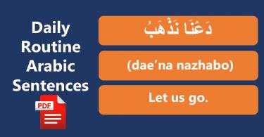 Daily routine Arabic to English sentences with PDF File