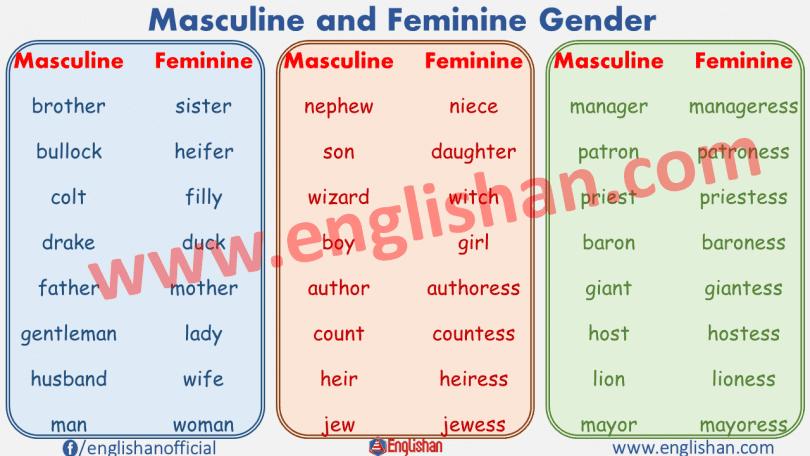 Masculine and Feminine Gender