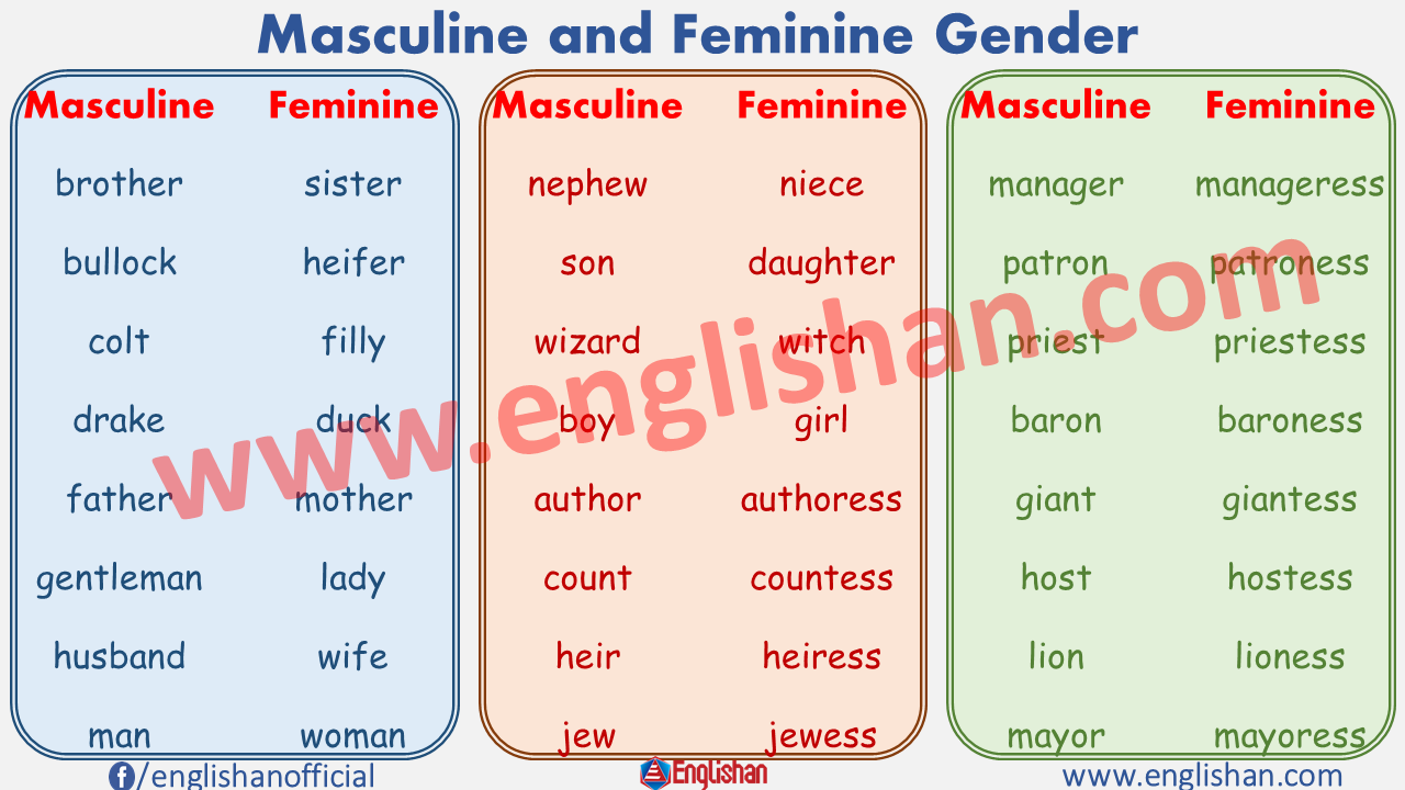 Masculine and Feminine Gender with PDF File