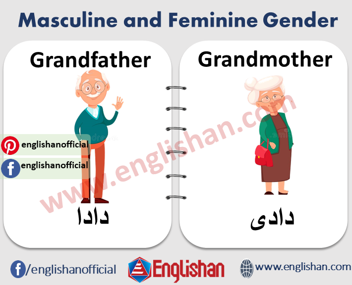 Masculine and Feminine Gender 1000 Examples and List