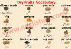List of Dry Fruits Names in Urdu, English and Hindi