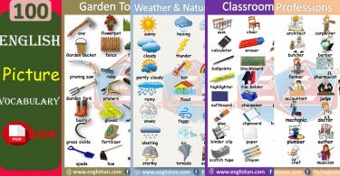 English Picture Vocabulary PDF BOOK