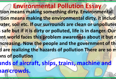 environmental pollution article in English