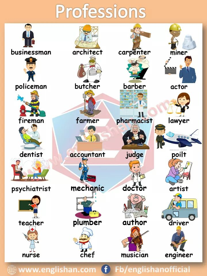 Picture Vocabulary about professions. Professions and occupations vocabulary