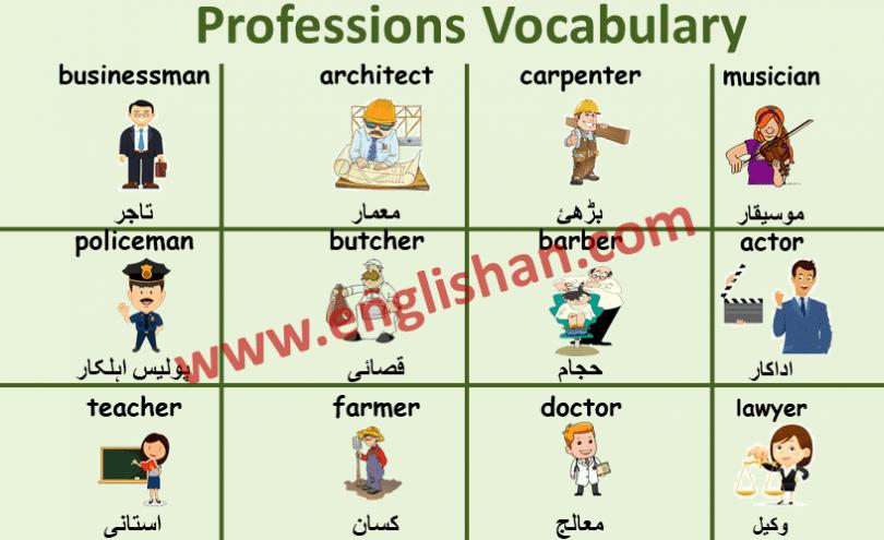 Professions Vocabulary Urdu to English