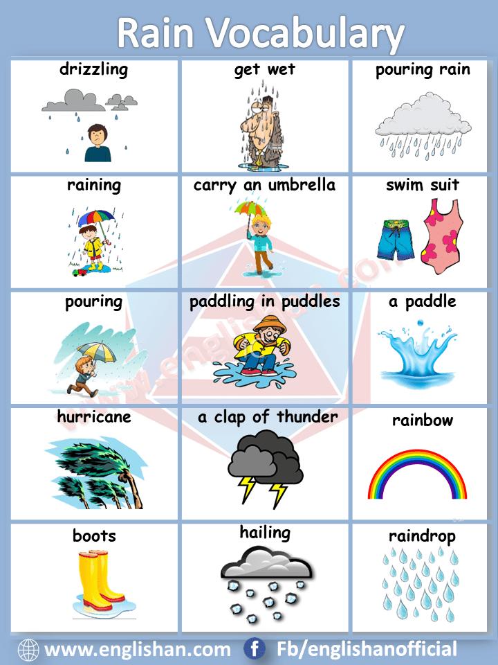 Rain Vocabulary List