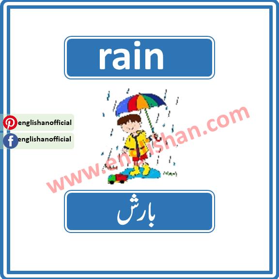 50 Words for Rain
