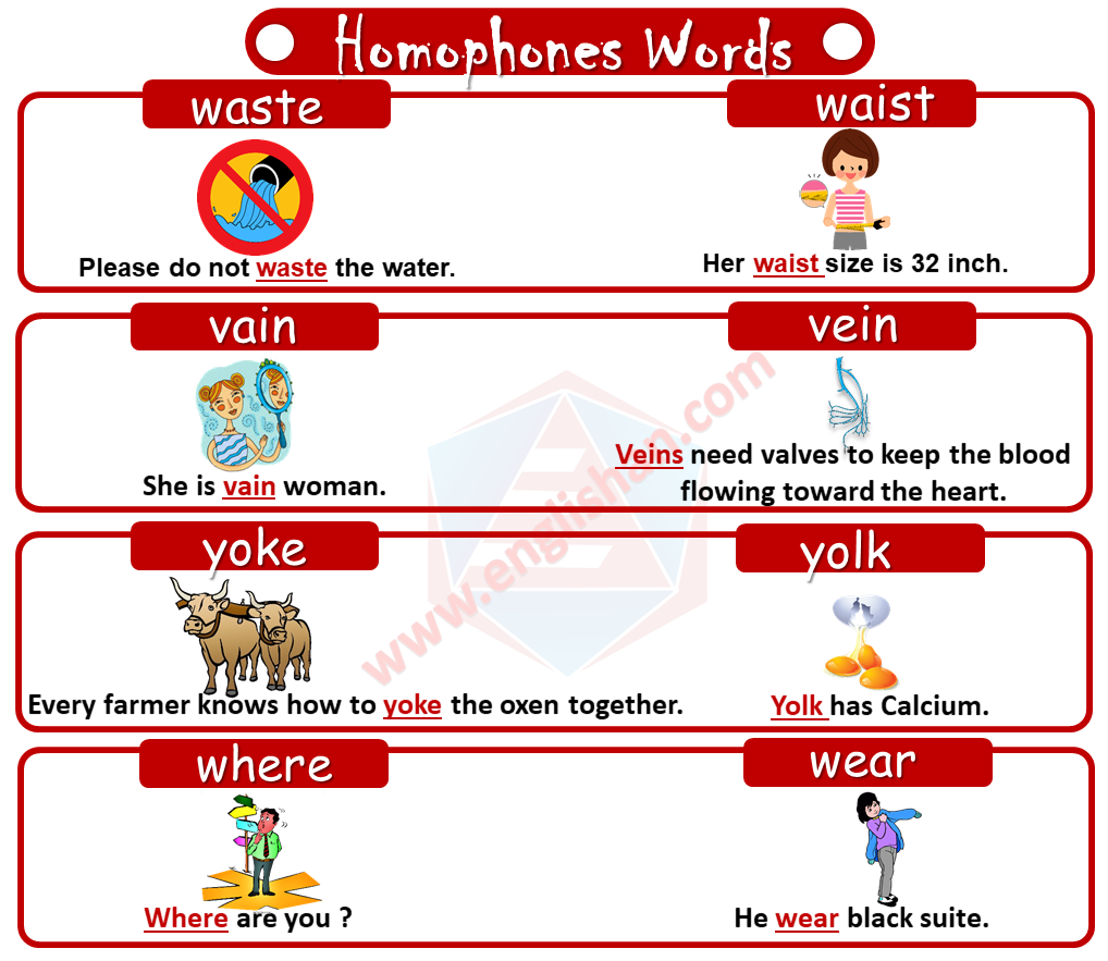 300 Homophones Words List with Exa
