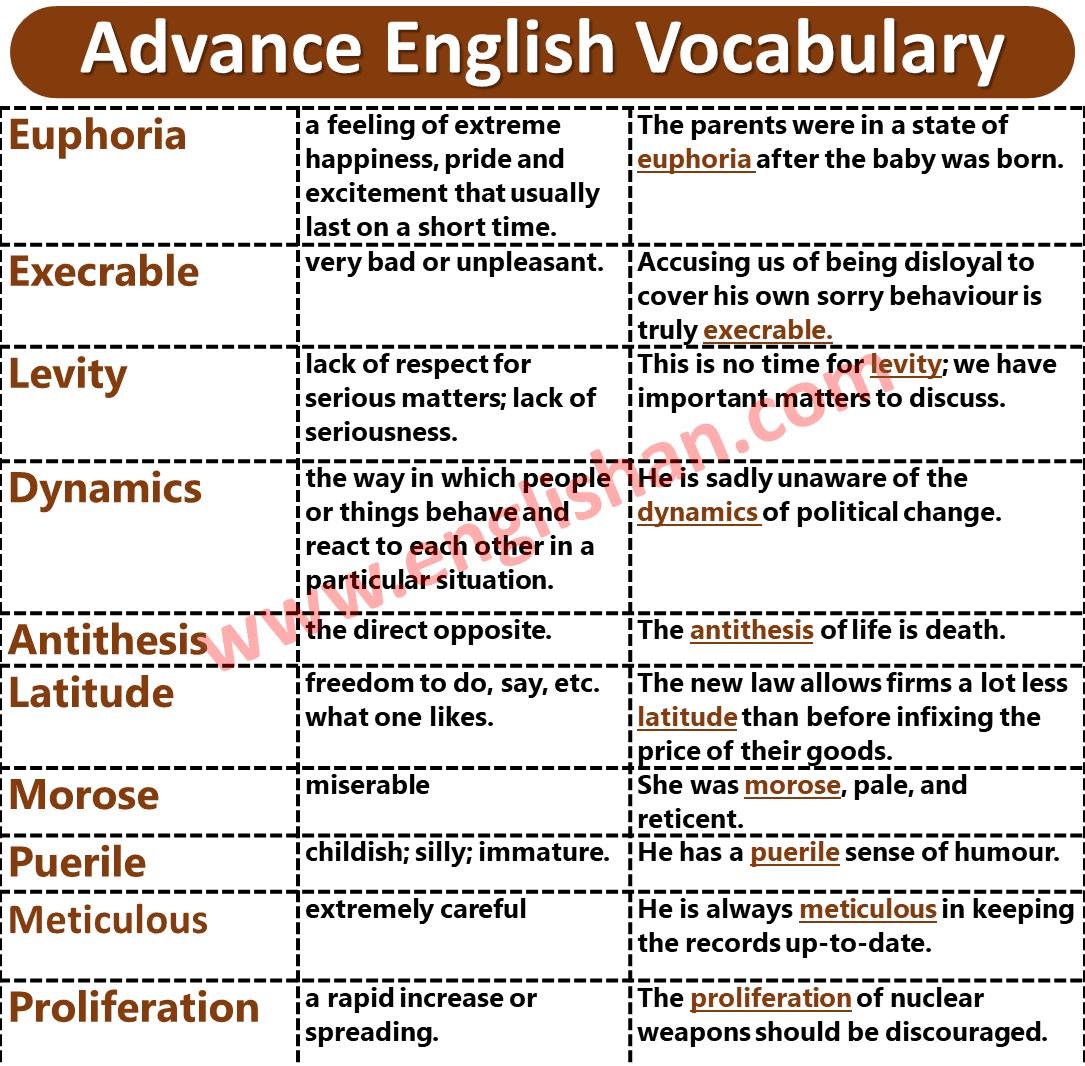 1000 Vocabulary Words