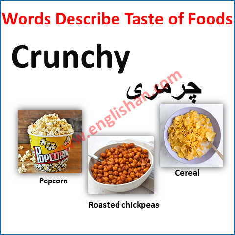How to Describe Food in An Essay